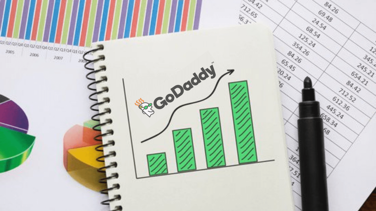 What is Godaddy Search Engine Visibility