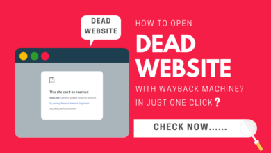 How To Open Dead Website