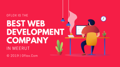 Website Development Company In Meerut